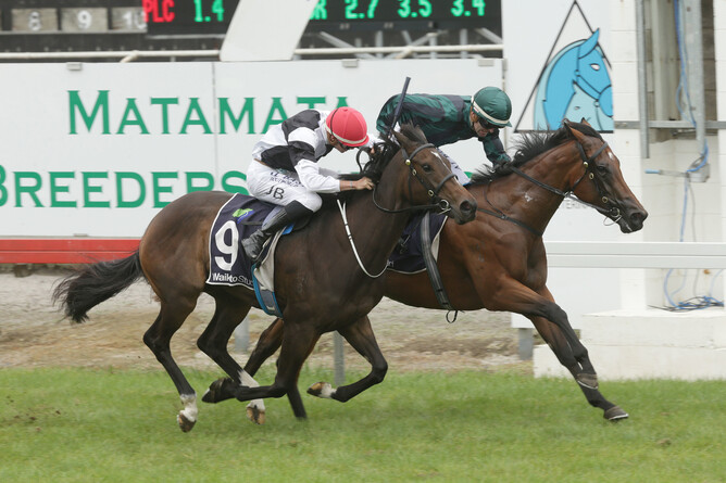 Aretha (Charm Spirit - Tsikory by Stravinsky) winning the Gr2 J Swap Contractors Matamata Breeders Stakes - photo Trish Dunell