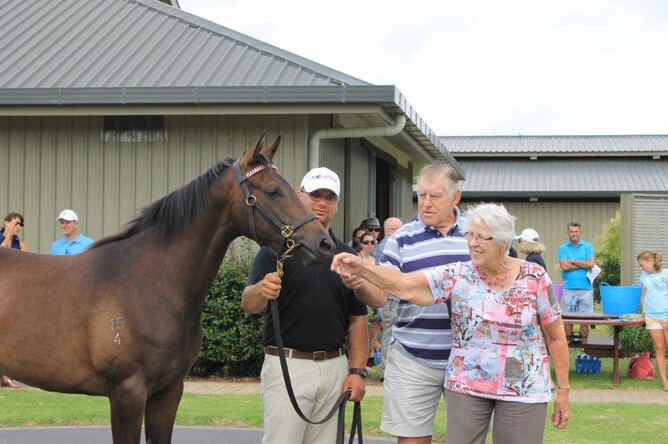 Sophie's Choice as a yearling parades for the late Sir Colin Meads and Lady Verna Meads