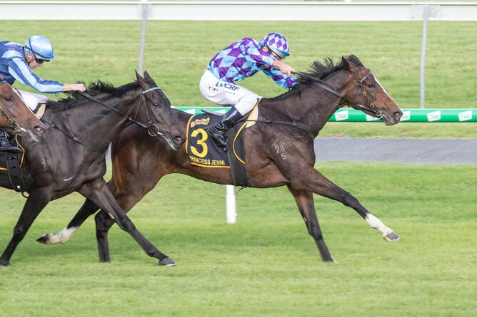 Princess Jenni continues to impress winning the Gr.1 Australasian Oaks at Morphettville - Bradley Photographers