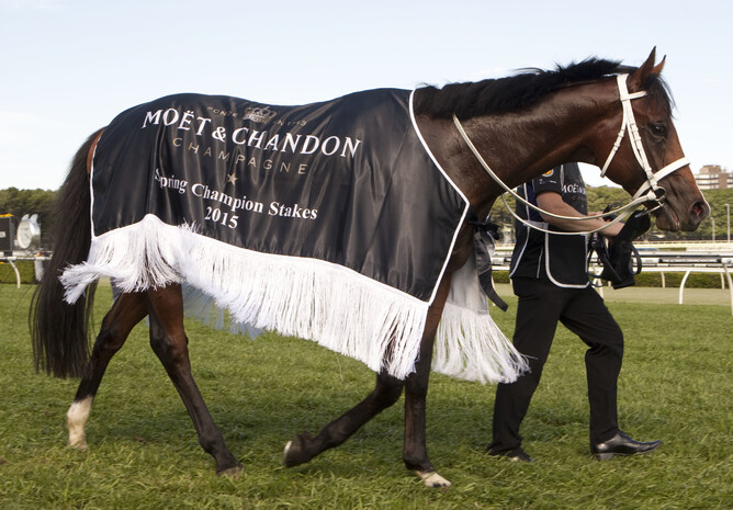 Vanbrugh parades following success in the Gr.1 Spring Champion Stakes at Randwick