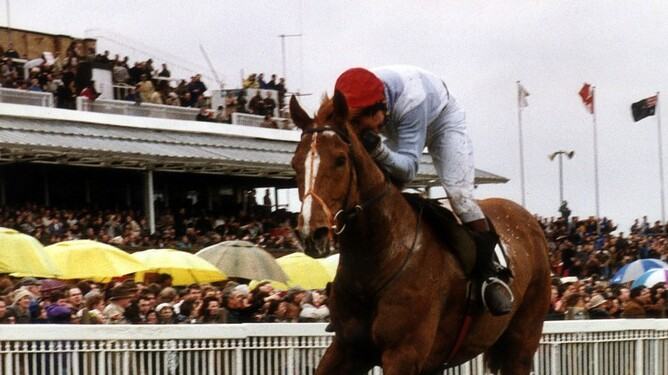 Jeanette Broome bred Seagram winning the Aintree 1991 Grand National Steeplechase