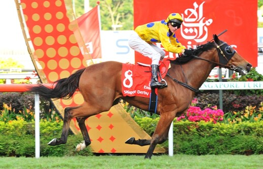 Clint (pictured above) winning the Singapore Derby last week