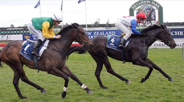 Orovela (pictured above) takes out the Listed Canterbury Belle Stakes - Photo NZTM website