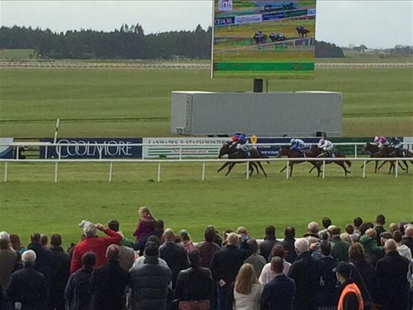 State Of Emergency defeats Mimicking at the Curragh