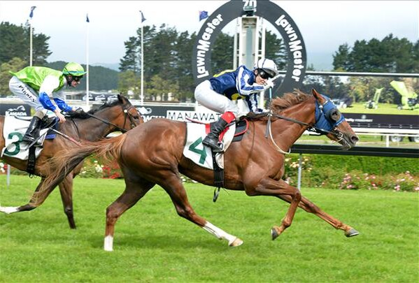 Choice wins the Eulogy Stakes at Manawatu on 13/12/14