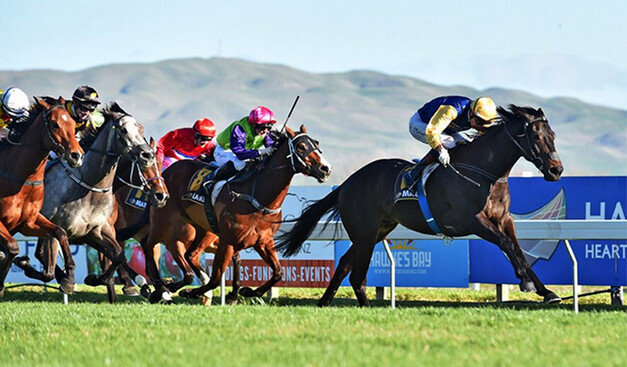 Kawi - Hawkes Bay Challenge Stakes  Pic:  Race Images