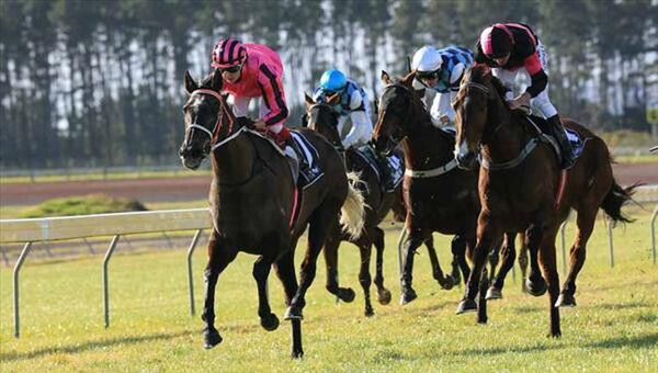 Bechtolsheimer wins the Whangarei Cup - Photo NZTM website