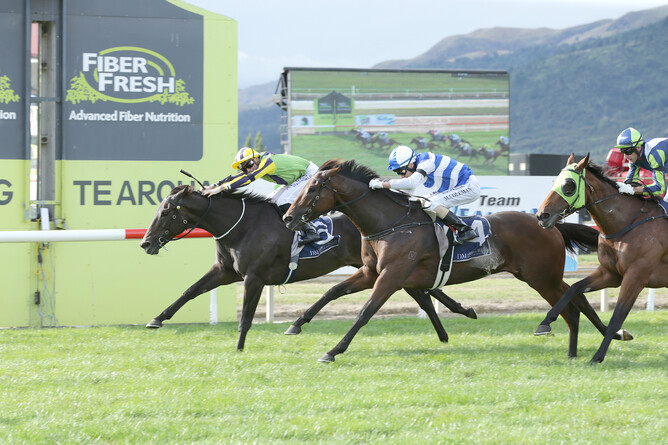 Nicoletta on her way to winning the 2019 NZ Thoroughbred Breeders' Stakes - Trish Dunell