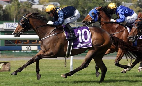 Viadana (Towkay - Yeah Nah) takes out the Group Three Eagle Technology at Ellerslie - Photo NZTM website
