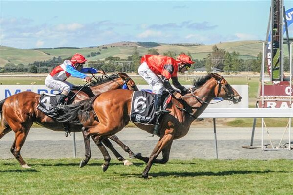Replique winning the Listed Southland Guineas 21-2-16. - Photo courtesy of Wild Range Photography