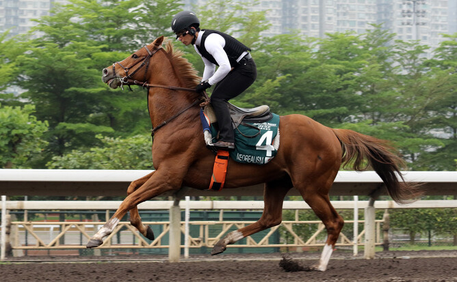 Track rider Shinjiro Kaneko's goggles were the talk of Sha Tin
