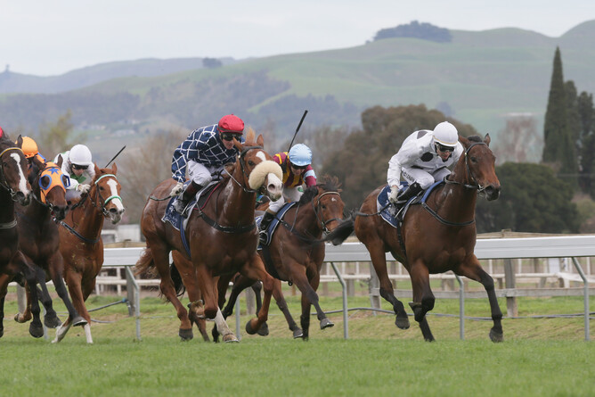 Honey Rider (white cap) wins the Gold Trail Stakes at Hastings. Photo -Trish Dunell