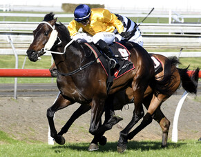 Vernanme takes Pukekohe feature