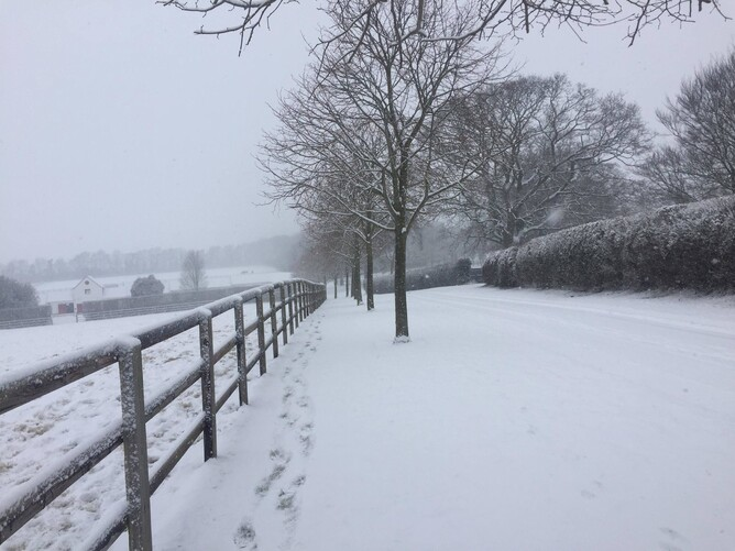 Paddocks covered in snow Cheveley Park stud