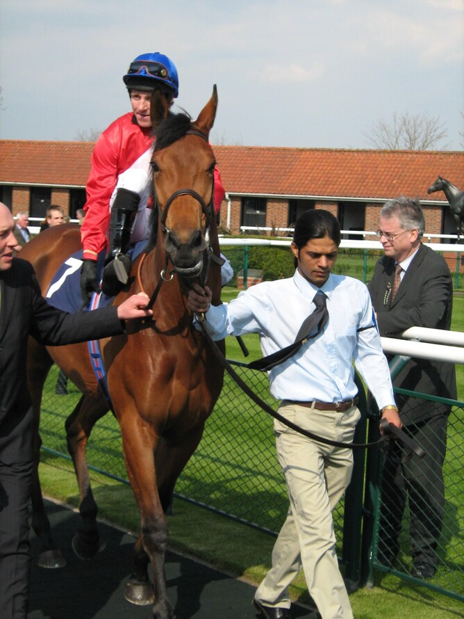 The exditing three-year-old filly Infallible before her impressive Nell Gwynn Stakes (Gr 3) win.