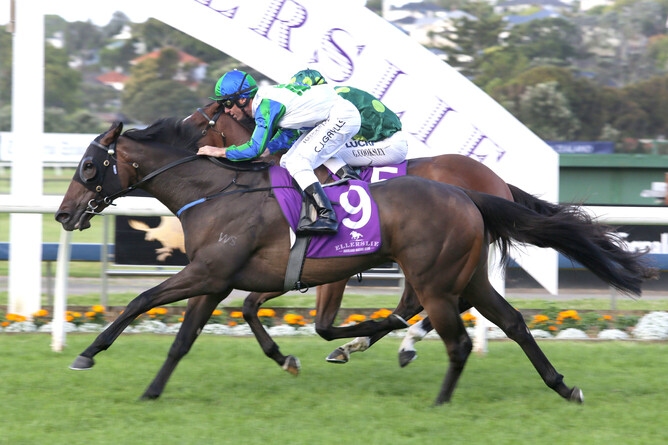 Coldplay wins the Gr.3 Eagle Technology Stakes (1600m). Pic.  Trish Dunell