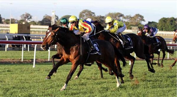 Kingdoms wins the Listed Mercedes Benz Centenary Mile at Eagle Farm - Photo NZTM website
