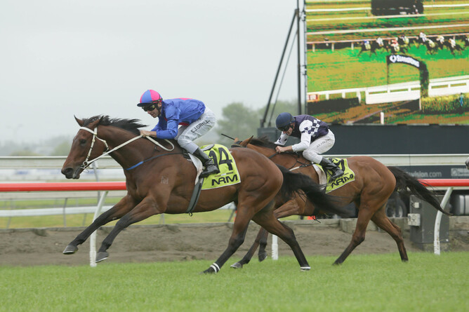 Chocante wins the Gp.3 Ssyangyong Counties Cup - Pic. Trish Dunell