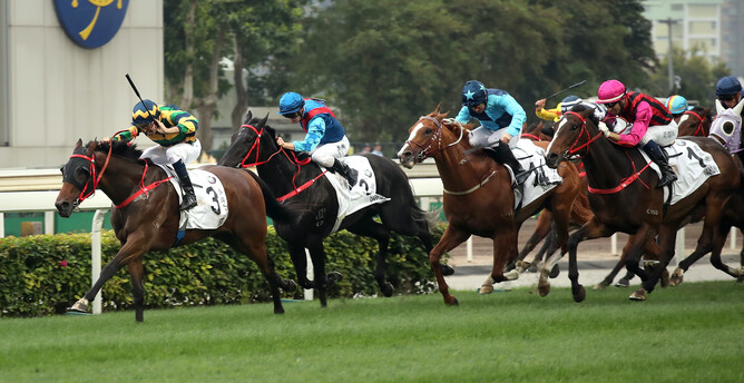 NZ bred Furore winning the Hong Kong Derby - picture HKJC