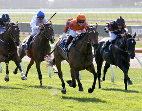 Oaks victory a boost for NZTBA members' broodmare Special Memories