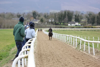 Sand and fibre up hill gallop at Con Marnane's