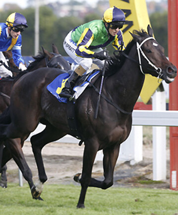 Hammer Down wins the Breeders' Stakes