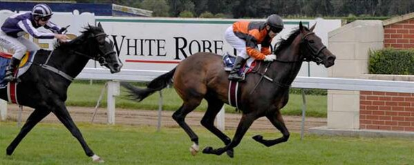 Madam Victoria wins the Listed NZ Bloodstock Airfreight Stakes at Wingatui - Photo NZTM website
