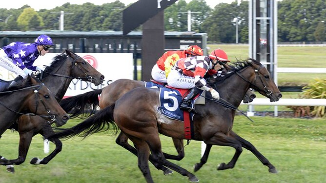Deb and jockey Masa Tanaka stave off the challenge by Nutee to win a 1215m maiden race at Rotorua last week.