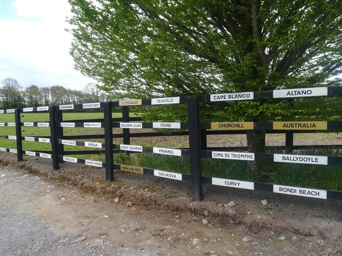Group 1 fence Coolmore Ireland