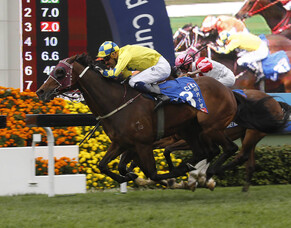 Werther seals Dubai trip