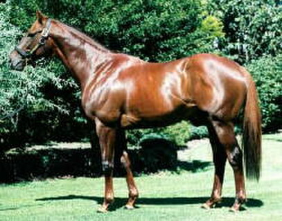 Traditionally, sire of Te Rapa stakeswinner Chant