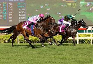 Debt Collector (Thorn Park) pictured winning the Listed Singapore Raffles Cup