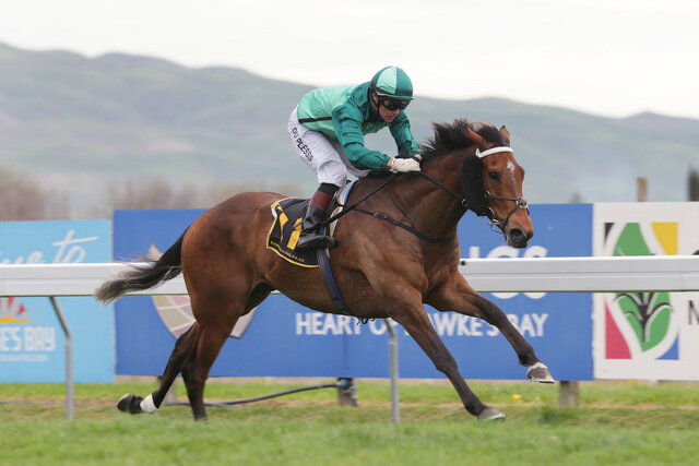 New Zealand Thoroughbred Breeders' Association   Passion for