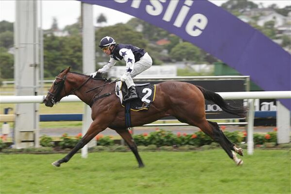 Vespa takes out the Listed Westbury Stud Challenge Stakes at Ruakaka - Photo NZ Racing Desk