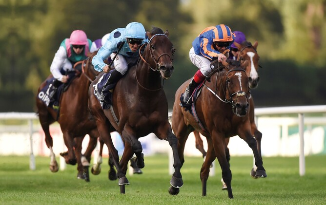 Almanzor (outer) winning the 2016 Gr.1 Irish Champion Stakes (2000m) - Cambridge Stud