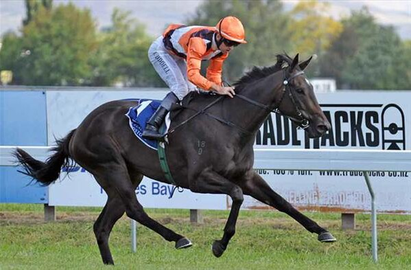 Miss Selby wins the Group 3 Lowland Stakes at Hawke's Bay - Photo:  NZTM website