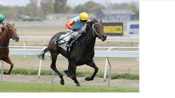 O'Marilyn wins the Group One Manawatu Sires'Produce - Photo NZTM website