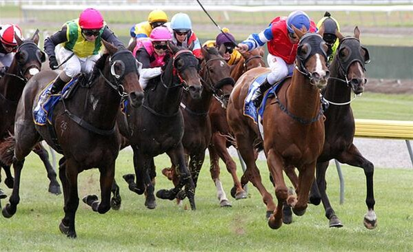 Dozintmateranyway (blue cap, red jacket) wins the CJC East Cup at Riccarton - Photo NZTM website