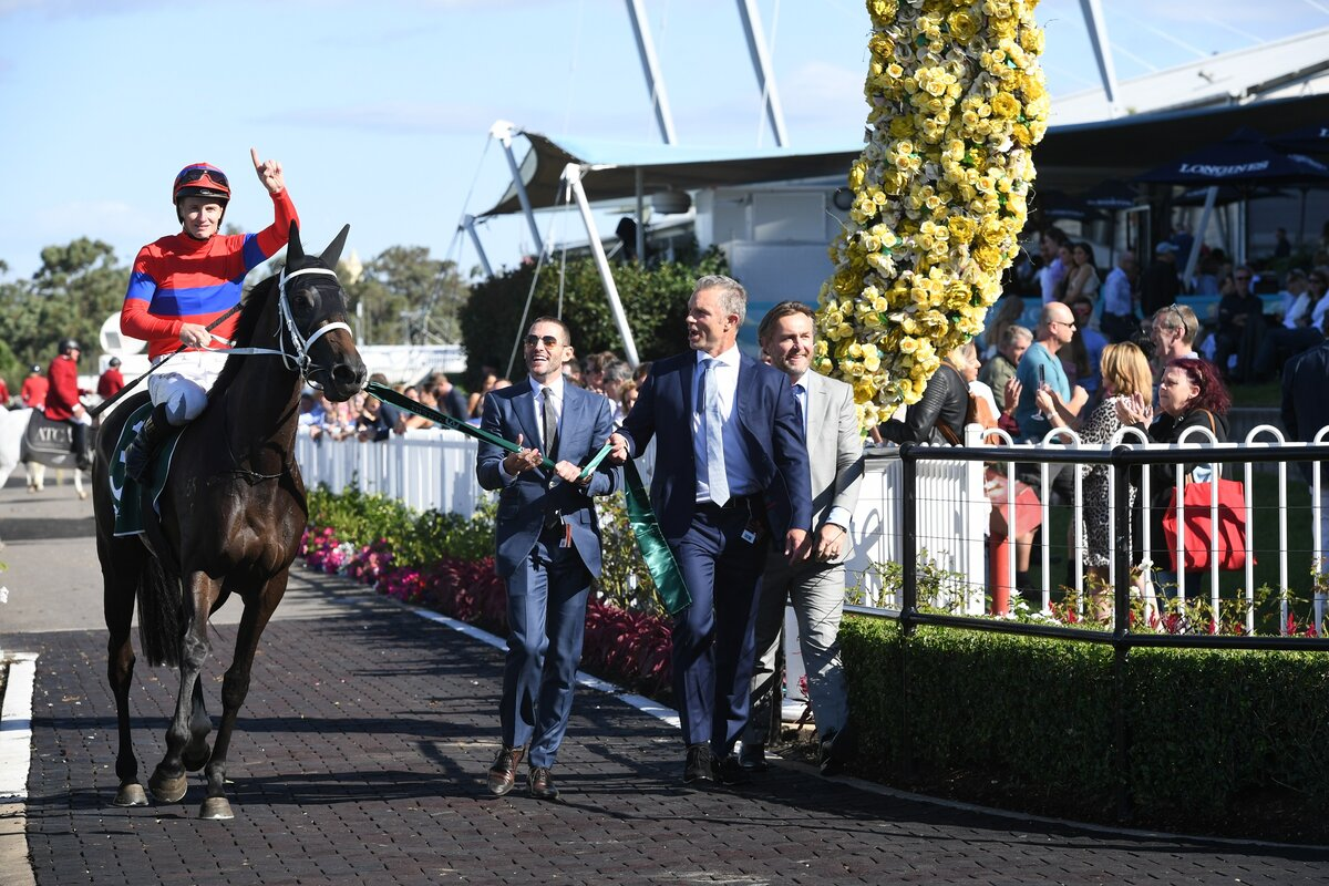 New Zealand Thoroughbred Breeders' Association   Paradox and