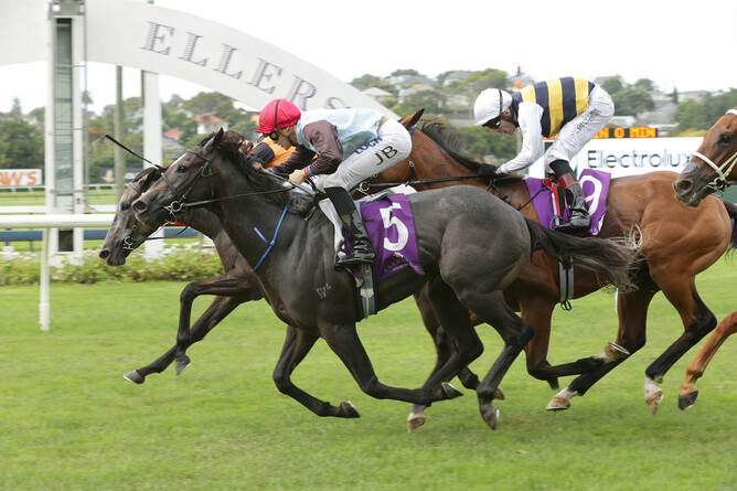 On The Rocks (red cap) winning the Gr.2 Avondale Guineas (2100m) -  Trish Dunell