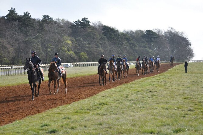 A string walk home after completing their work up Warren Hill