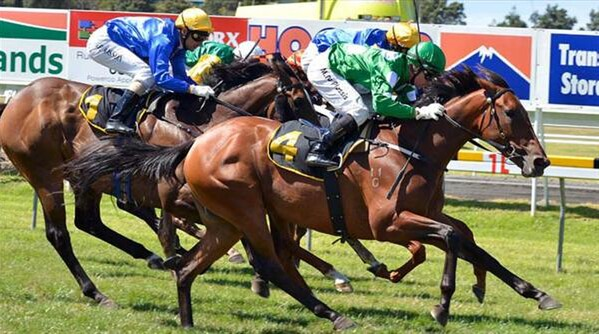 Girl Of My Dreams heads off her competitors in the Group 3 Taranaki 2YO Classic. - Photo:  NZTM website