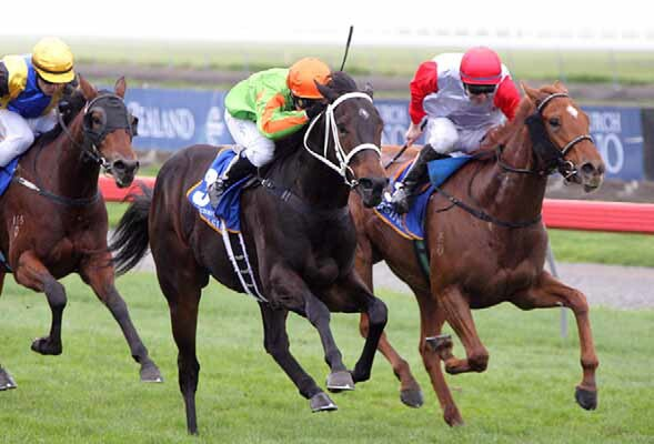 Salamanca (nearest camera) takes out the Champagne Stakes at Riccarton - Photo NZTM website