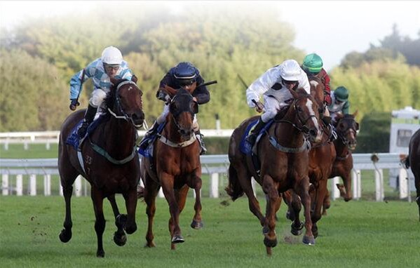 Pimms Time (white with black spots) holds on to win the Travis Stakes last weekend. - Photo NZTM website