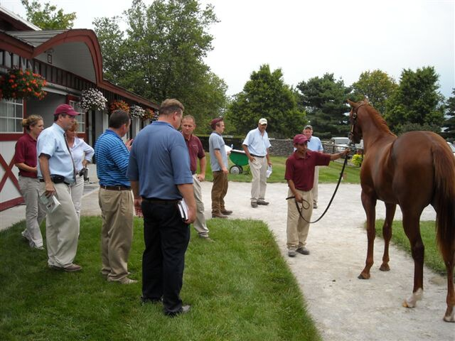 A pre-sale inspection with the Taylor Made team.