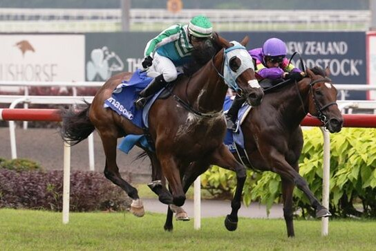 Infantry (Manoel Nunes) outbattles Countofmontecristo (Glen Boss) to gain victory in the   Panasonic Kranji Mile, picture Singapore Turf Club