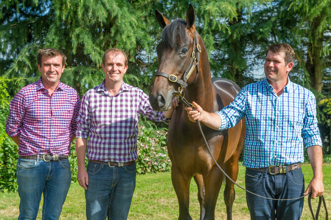 Dean, Leigh and Sean Hawkins with the Tavistock x Hy Fuji yearling sold in 2018 - Michael Rist