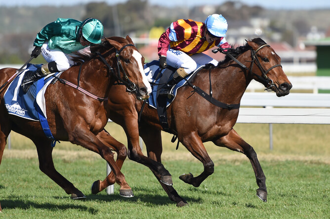 Its Time For Magic (inside) winning the O'Leary's Fillies Listed Stakes at Wanganui