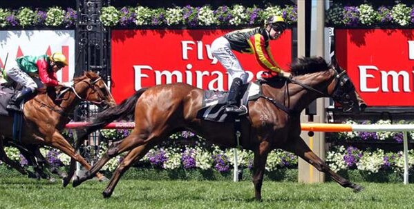 Kirramosa easily wins the WakefulStakes on opening day of the Melbourne Cup Carnival - Photo NZTM website