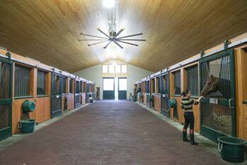 The Winstar stallion barn
